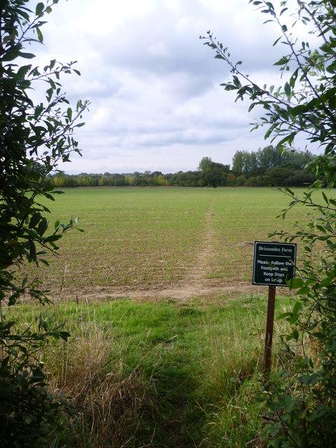 Footpath to Brissenden Farm