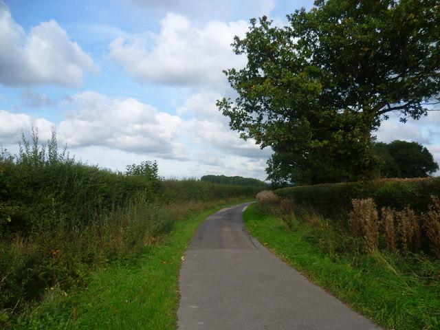 Lane to Hareplain