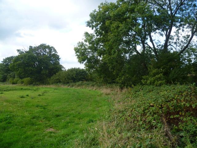 View alongside Hammer Stream near Sissinghurst Castle