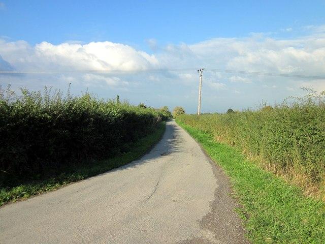Lane to Sutton Lodge