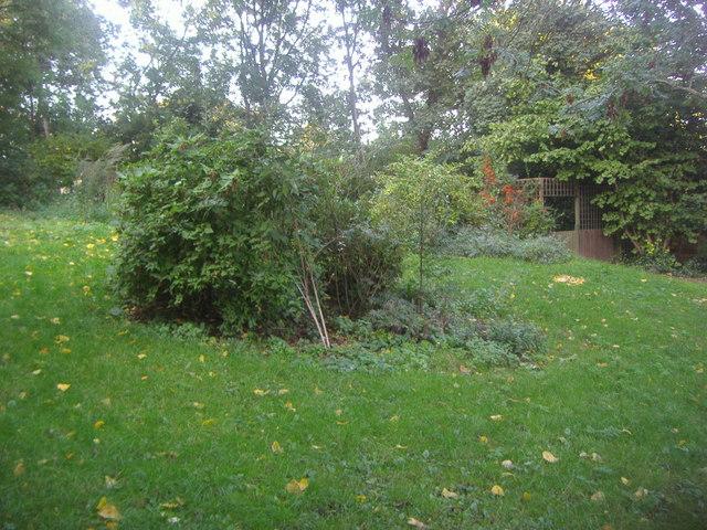 Sunnyside Gardens, Upper Holloway