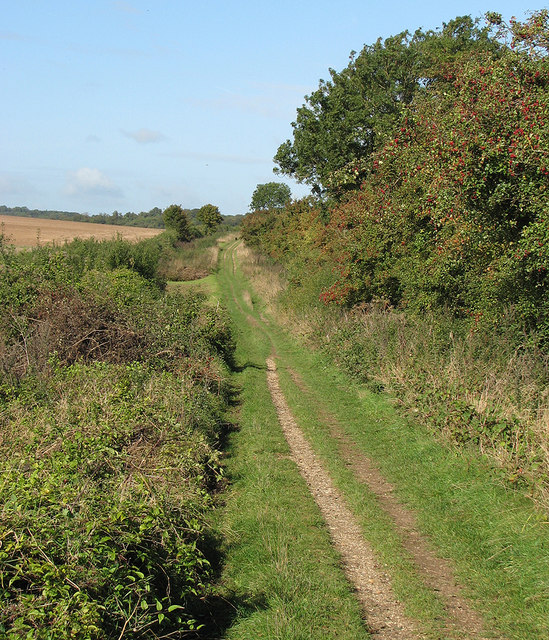 The Roman Road near Worsted Lodge