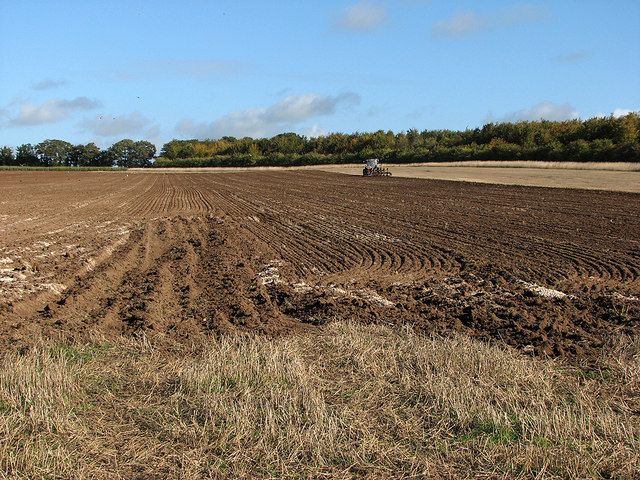 Autumn ploughing near Worsted Lodge
