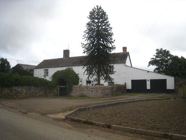 The farmhouse at Town Farm Bulkworthy