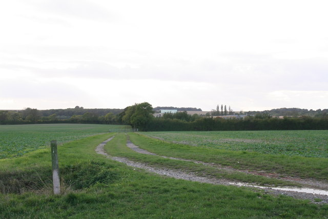 Track to South Farm