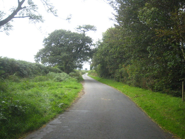 The road from Bulkworthy to West Putford