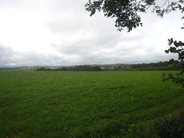 Field near Stowford