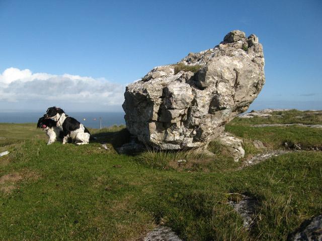 Erratic boulder