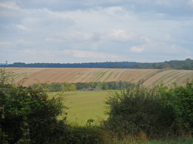 View north from Magdalen Hill Cemetery