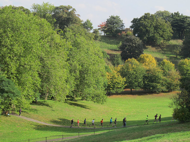 Runners in Greenwich Park