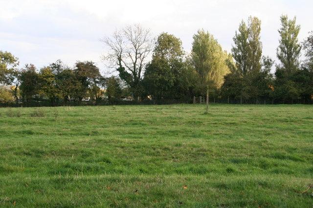 Ridge and furrow field on the Wanderlust Way