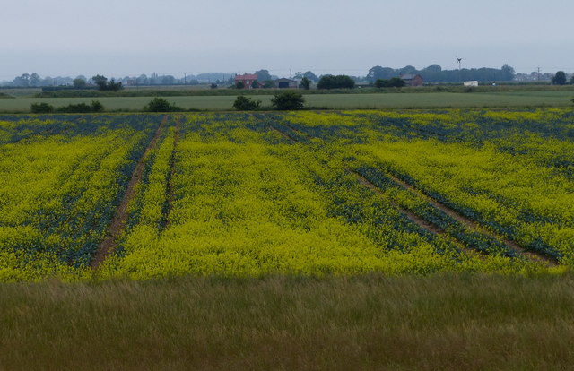 Farmland near Freiston Shore