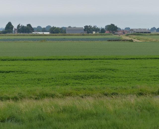 Farmland and White Loaf Hall farm