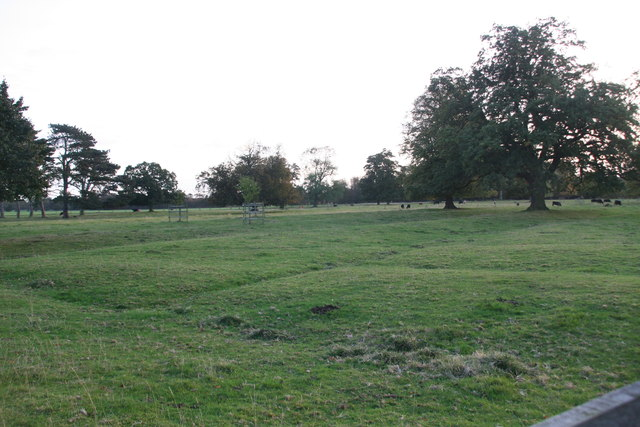 Earthworks or old enclosure marks in Grainsby Park