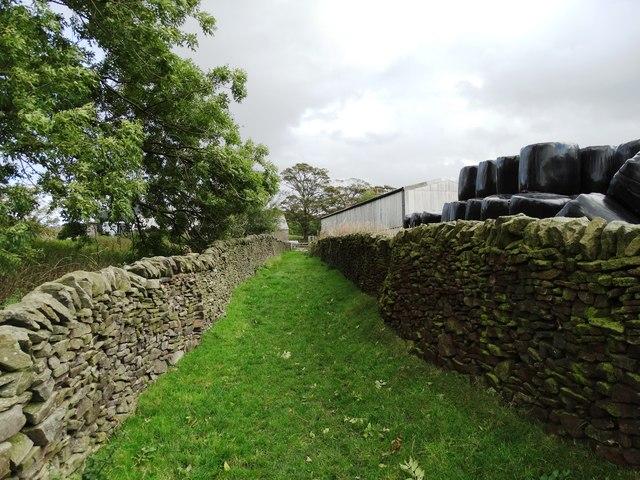 Approaching White Knowl Farm