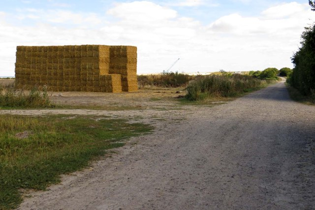 Straw bales by the Icknield Way