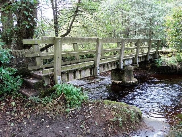 Footbridge to the west of Wash