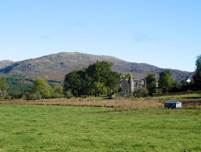 Pasture at Auchinleck