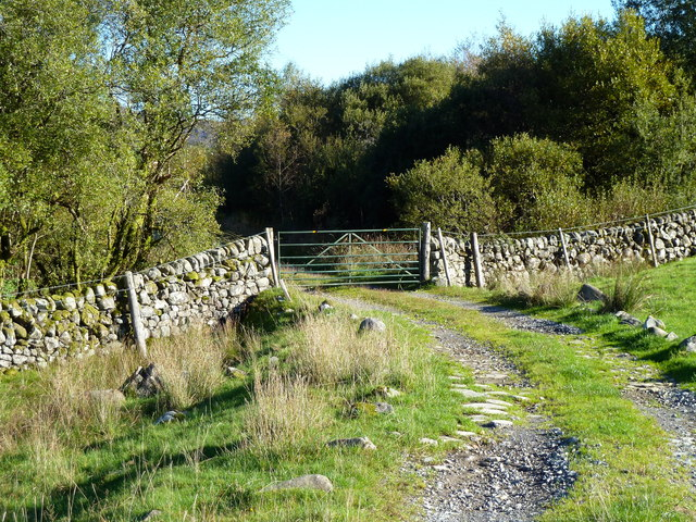 Farm track from Auchinleck entering forestry area