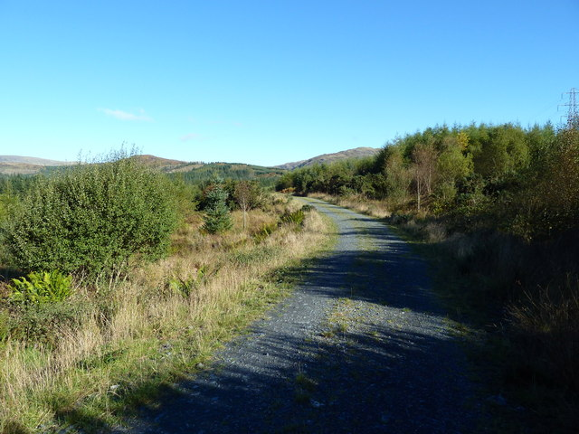 Forestry track north of Auchinleck