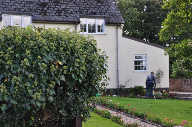 Ashill : Lyme House