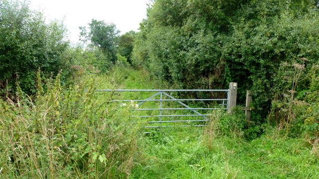 Littlemeadow Lane