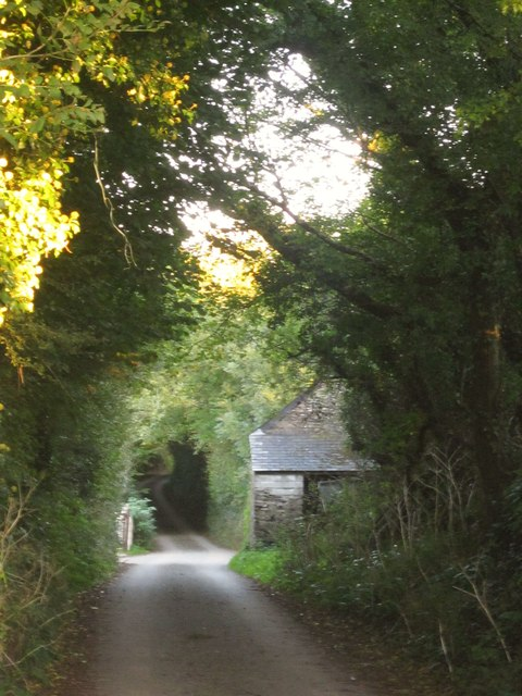 Lane at Tideford Cross