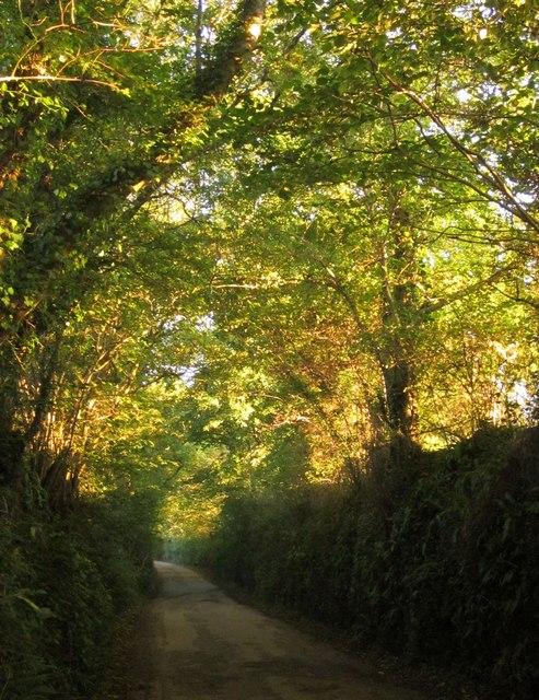 Tideford Cross Lane