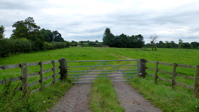 Meadows east of Bartonfields