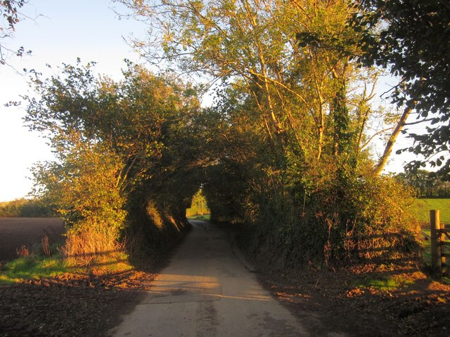 Tideford Cross Lane