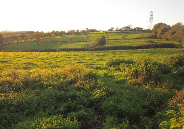 Farmland, Lanthrone