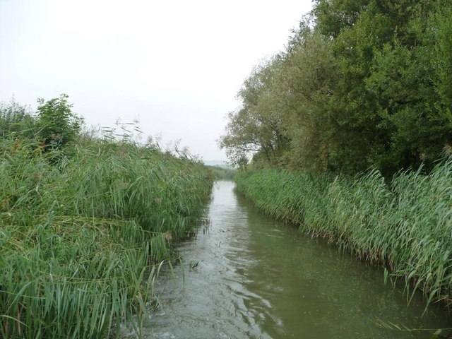Rushes between bridges 132 and 131