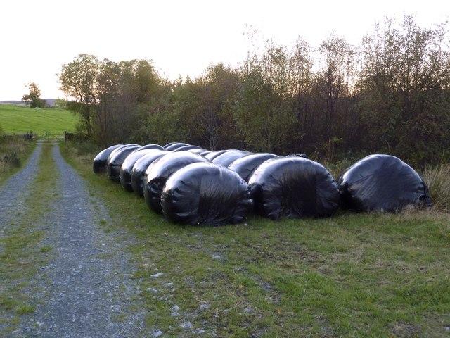 Black plastic bales beside the track