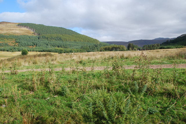 Looking towards Inverlail Forest