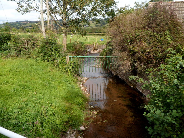 Brook viewed from Brookland Bridge, Dorstone