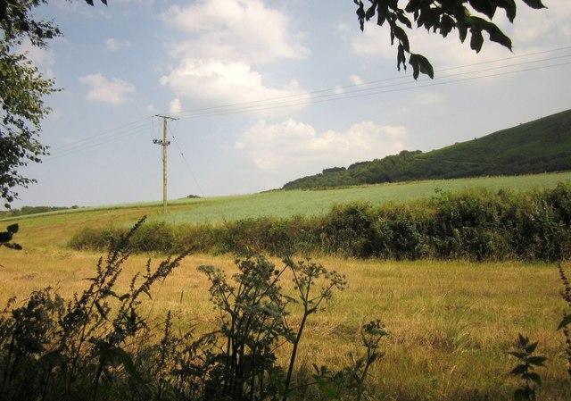 Farmland near Eastacombe