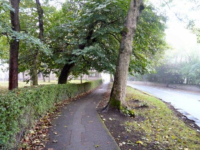Autumn on Victoria Street