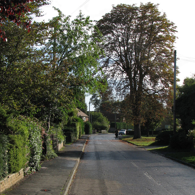 An autumn morning in Little Abington