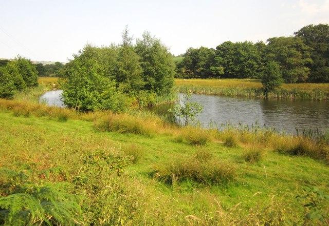 Lake near Landkey