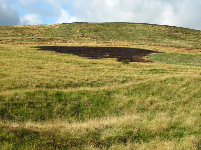 Burnt grass and mining hollows