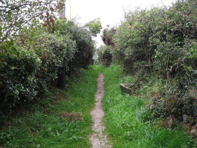 Llwybr i Ynysgain - Path to Ynysgain