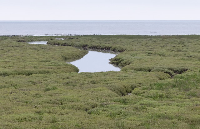 Tidal creek, salt marsh and The Wash