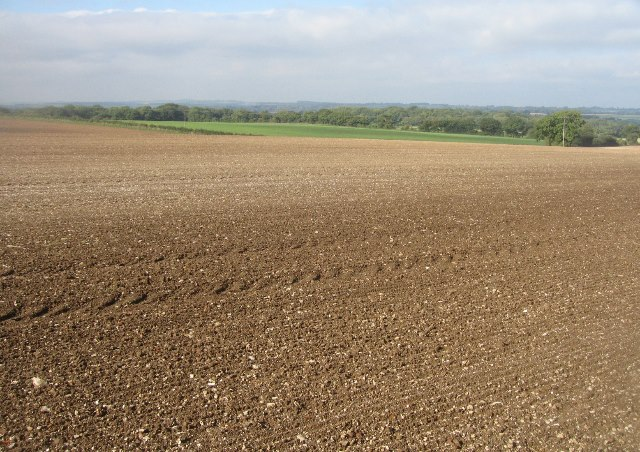 Farmland southwest of Basingstoke