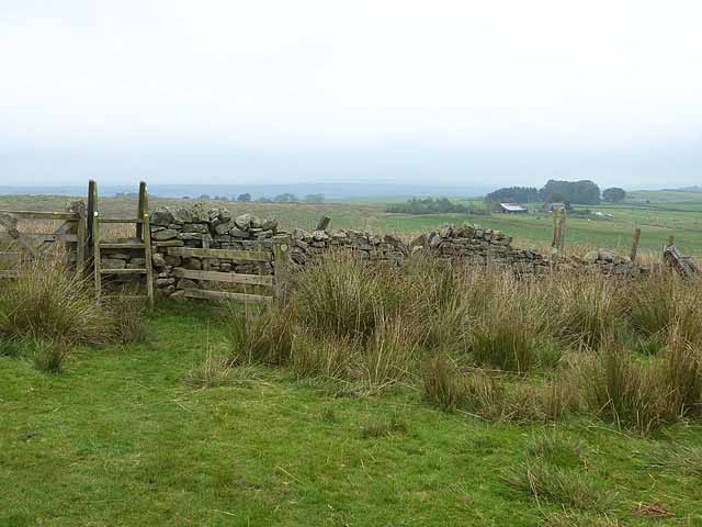 Pennine Way at Longlee Rigg