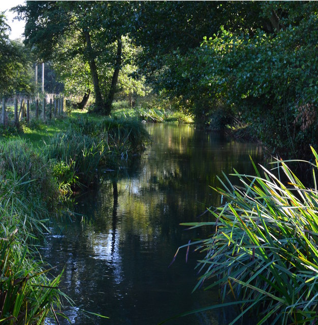 The River Pang southwards from a footbridge by Alder Copse, Tidmarsh, Berkshire