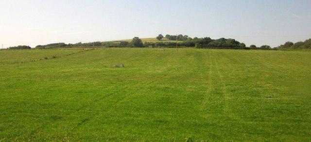 Field by Aller Cross