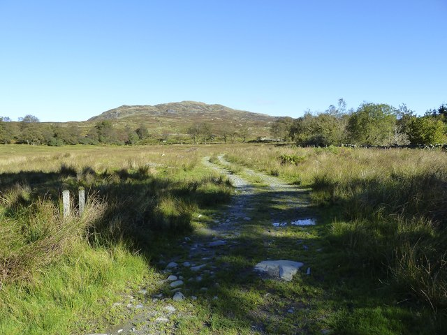 Farm track from Drigmorn to the hills