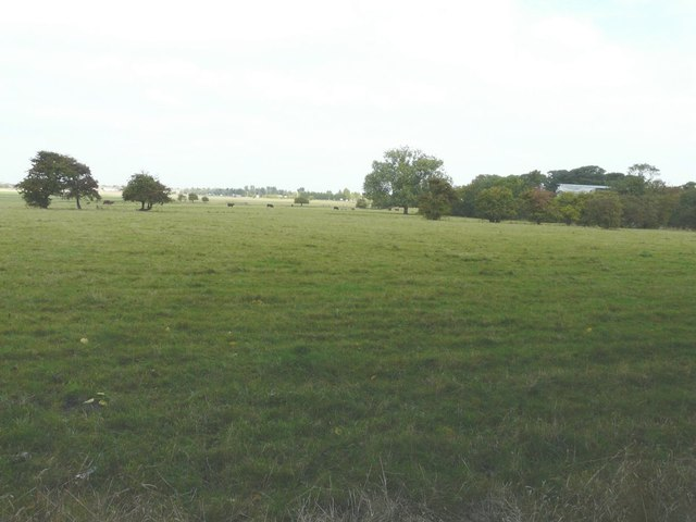 Northerly view from Sheppey Cemetery