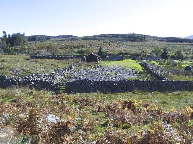 Sheepfold at Drigmorn