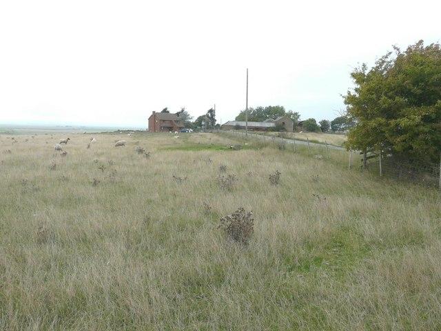 Capel Hill Farm